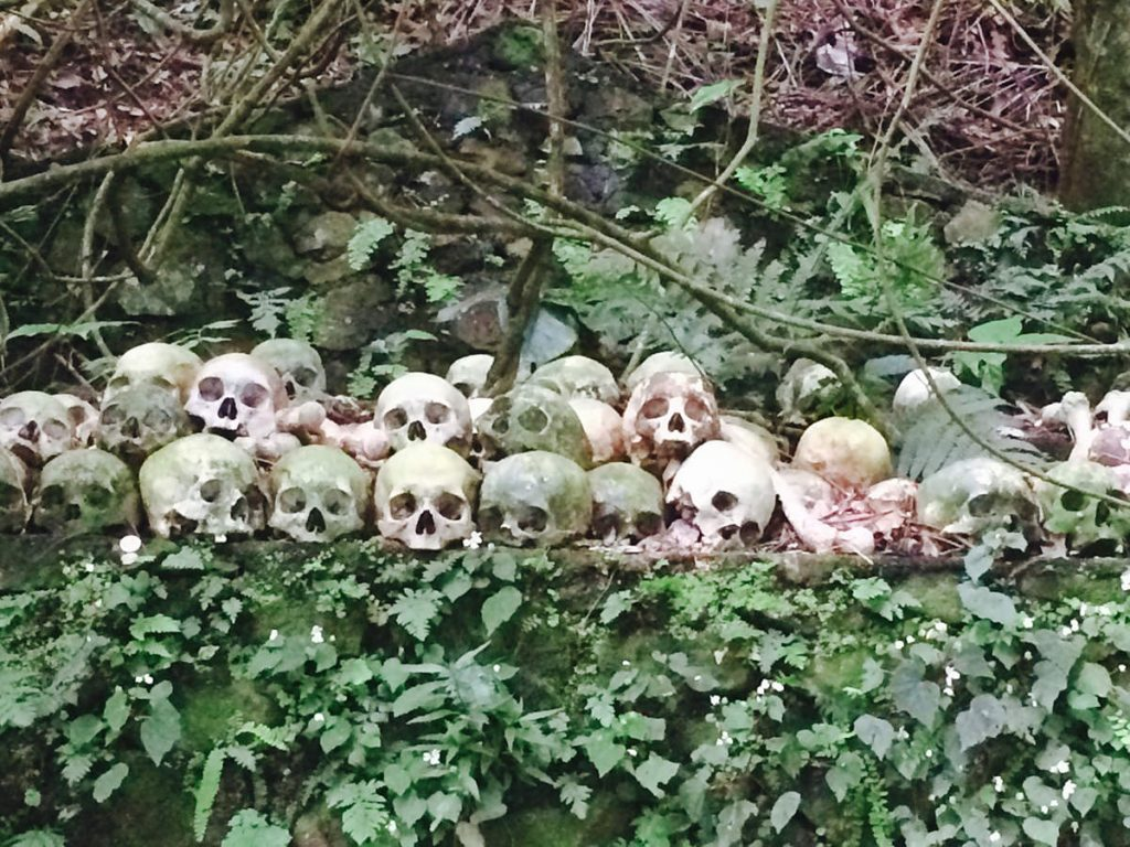 image-death-is-love-skulls